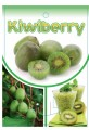Kiwiberry - 175mm pot (Pick up only)